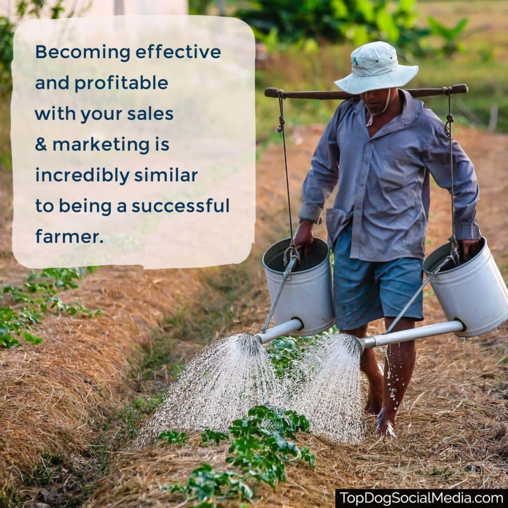 Becoming effective and profitable with your sales and marketing is incredibly similar to being a successful farmer.